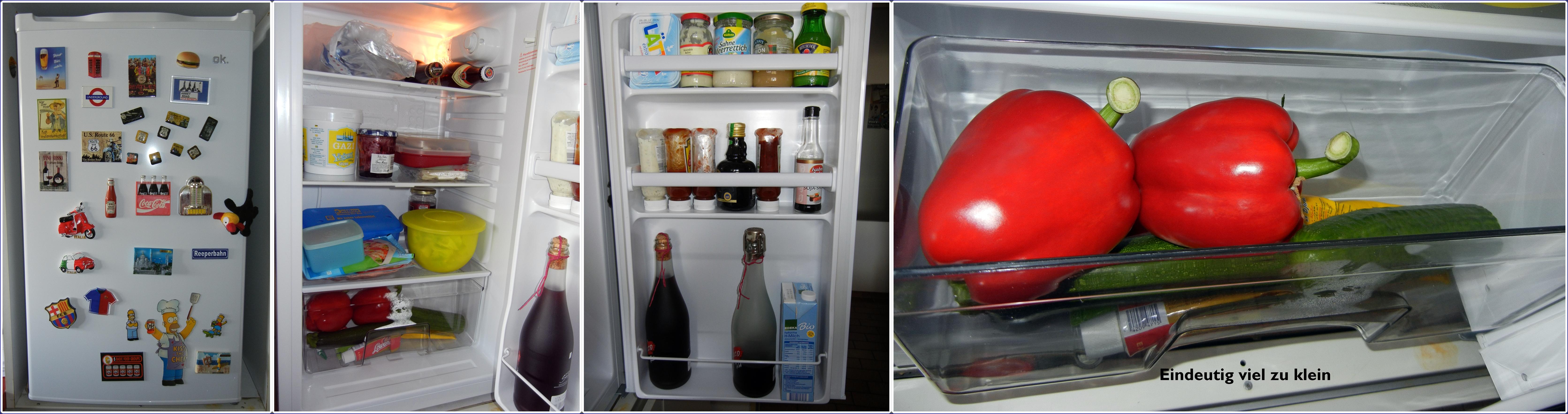 Kühlschrank OFR 200 Erfahrung