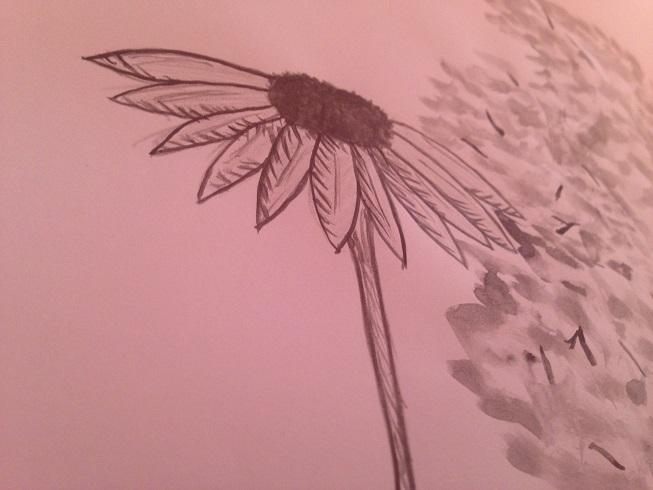 Faber Castell Zeichnung 1